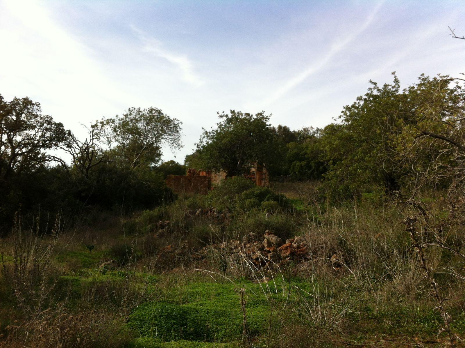 Terreno para construção até 2500 m2 próximo de Loulé MP070FT