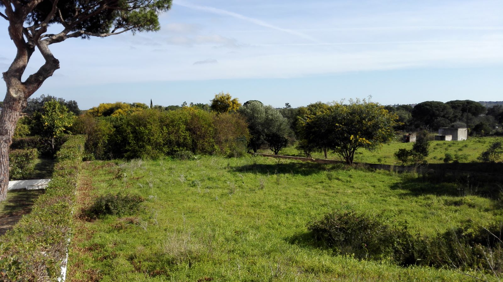 Land for construction near Quarteira for sale