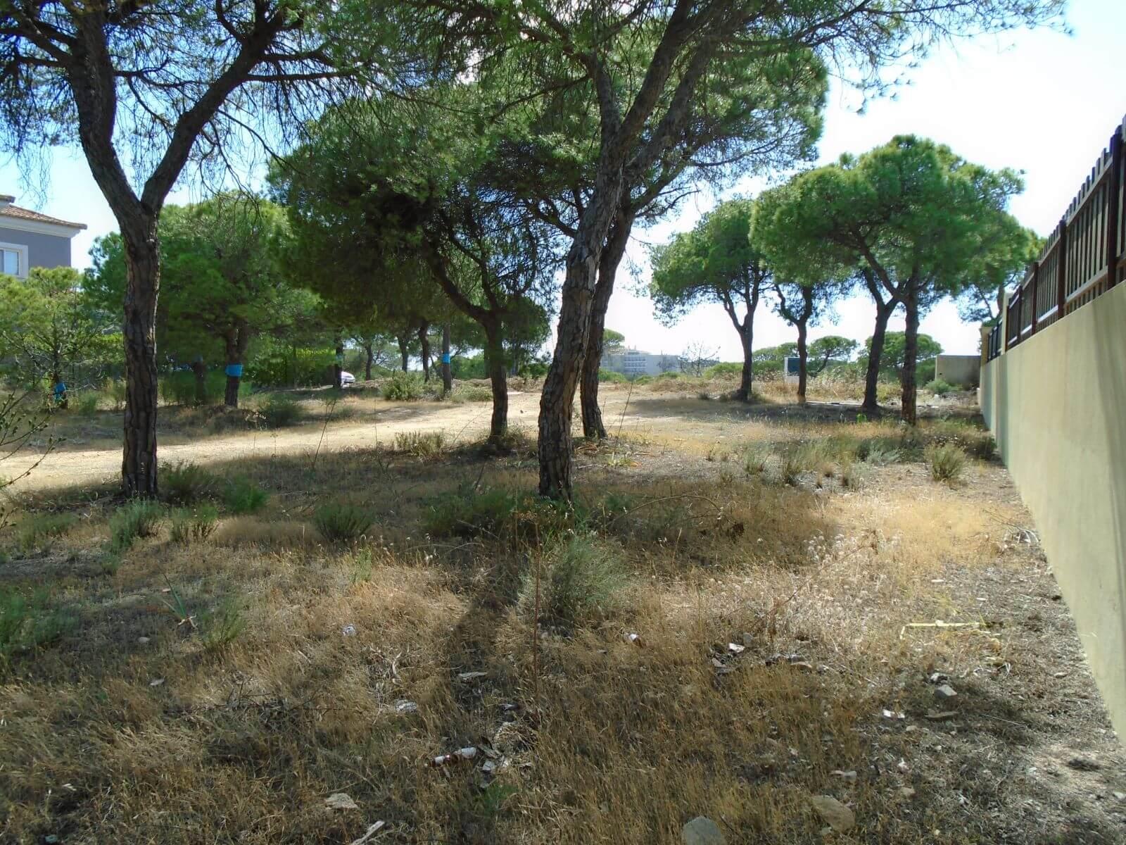 Terreno para construção de moradia com 594m2, em Varandas do Lago PC281