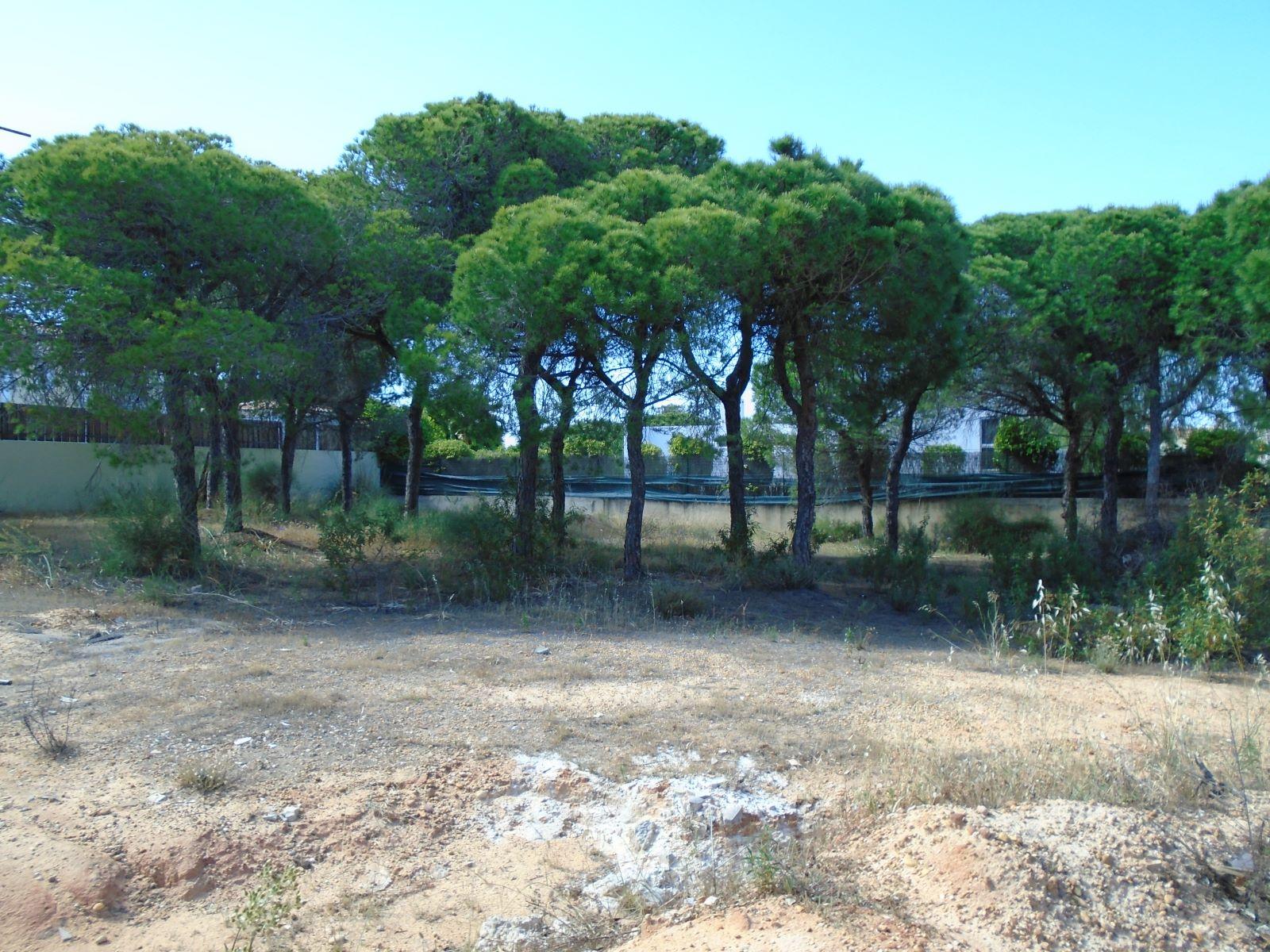 Terreno para construção de moradia com 641m2, em Varandas do Lago PC282