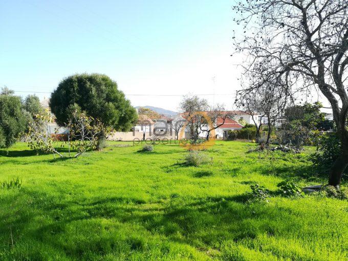 Terreno para construção de moradia próximo de Almancil - exterior