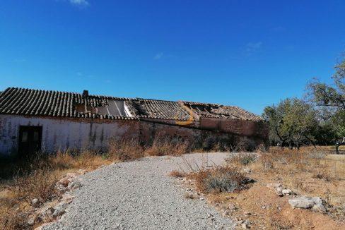 Terreno para construção de moradias, com vista mar, em Boliqueime PC233