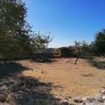 Terreno com projeto aprovado para moradia com 4 quartos em Boliqueime - exterior