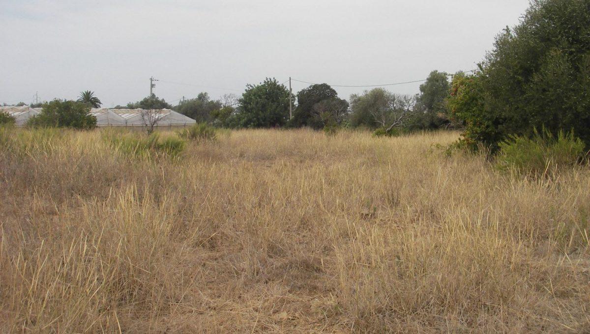 Terreno para venda em Olhão PC173