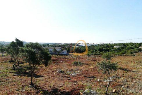 Terreno para construção de 6400 m2 próximo IKEA Almancil PC311