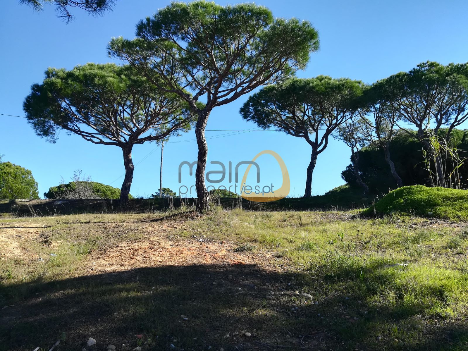 Land for construction of 569 sqm villa in Vilas Alvas