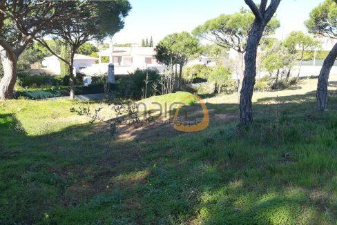Terreno para construção de moradia de 569 m2 em Vilas Alvas PC343