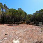 Terreno rústico em zona calma próximo de Vale do Lobo - exterior