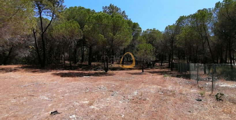 Land in quiet location near Vale do Lobo