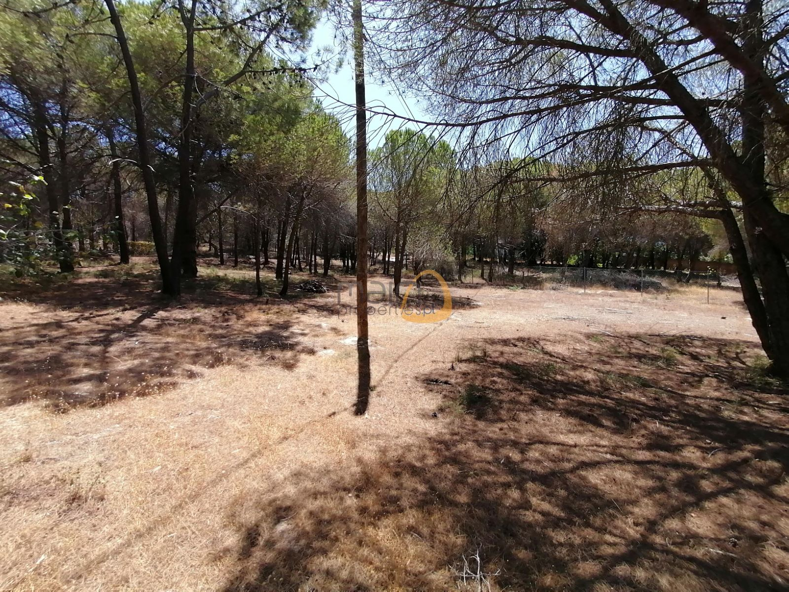 Terreno em zona calma próximo de Vale do Lobo PC354