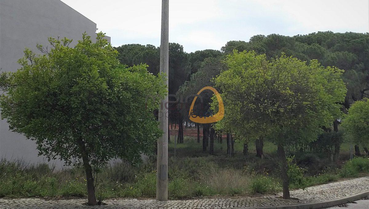 [:pt]Terreno para construção de moradia em Montenegro - Faro : Algarve : Portugal : Terreno 13 :: MR039[:en]Land for Villa construction in Montenegro -  Faro : Algarve : Portugal :: Land 13 :: MainProperties :: MR039[:]