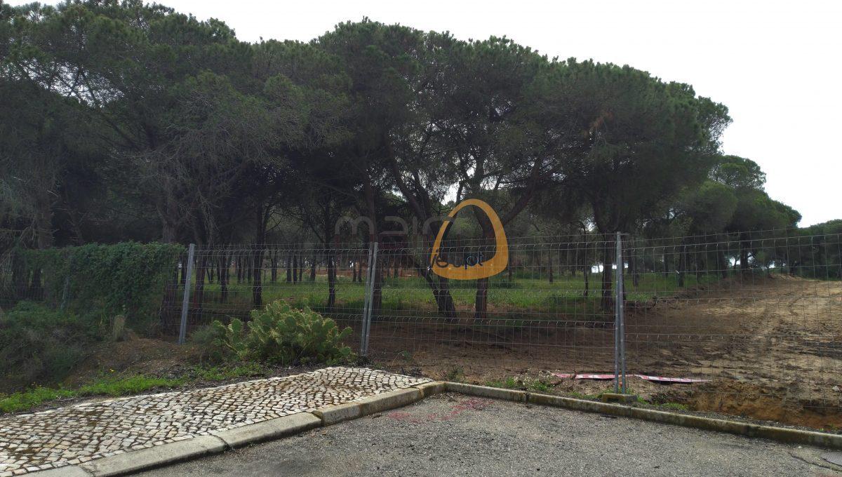 [:pt]Terreno para construção de moradia em Montenegro - Faro : Algarve : Portugal : Terreno 12 :: MR039[:en]Land for Villa construction in Montenegro -  Faro : Algarve : Portugal :: Land 12 :: MainProperties :: MR039[:]