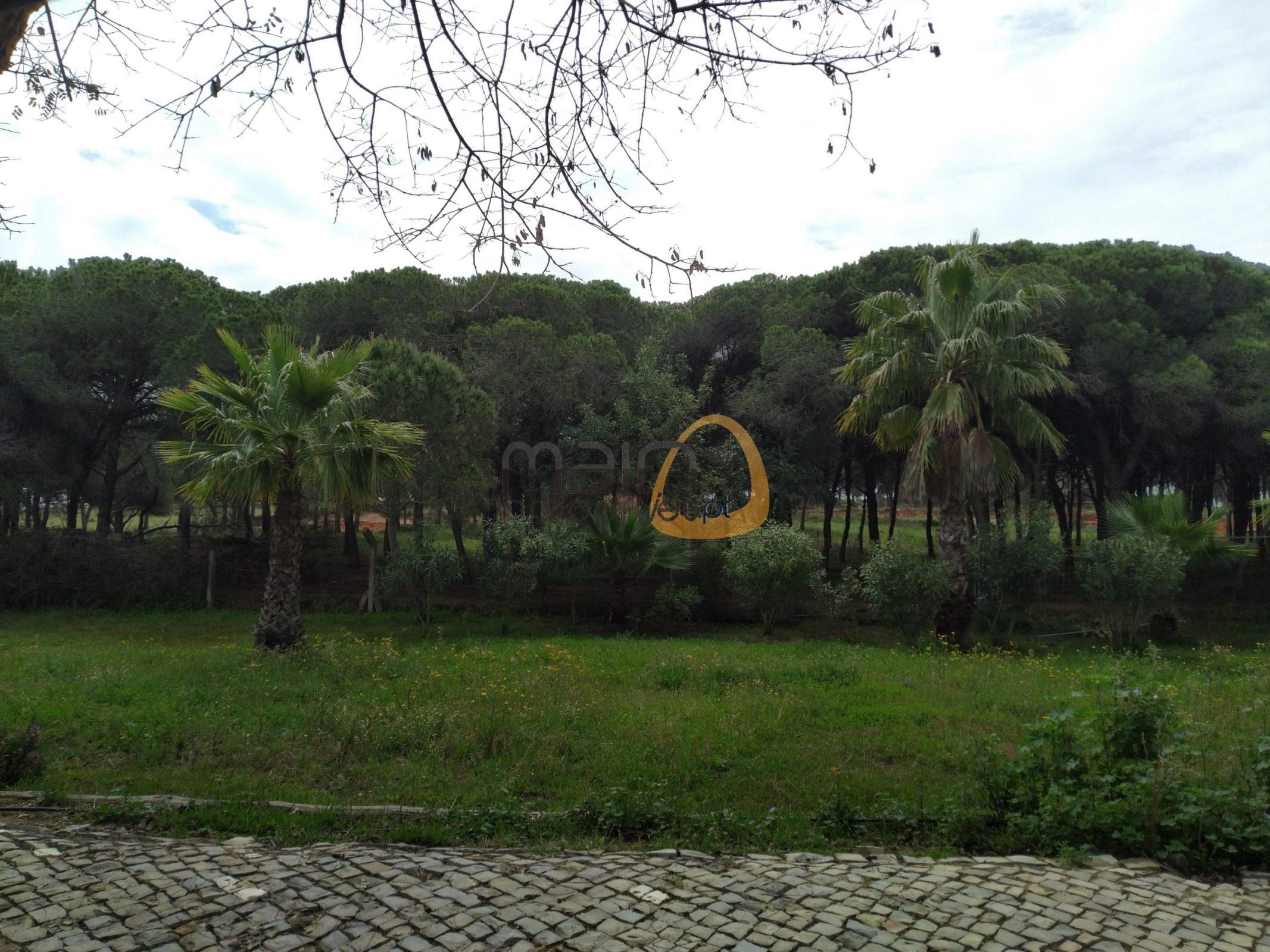 [:pt]Terreno para construção de moradia em Montenegro - Faro : Algarve : Portugal : Terreno 11 :: MR039[:en]Land for Villa construction in Montenegro -  Faro : Algarve : Portugal :: Land 11 :: MainProperties :: MR039[:]