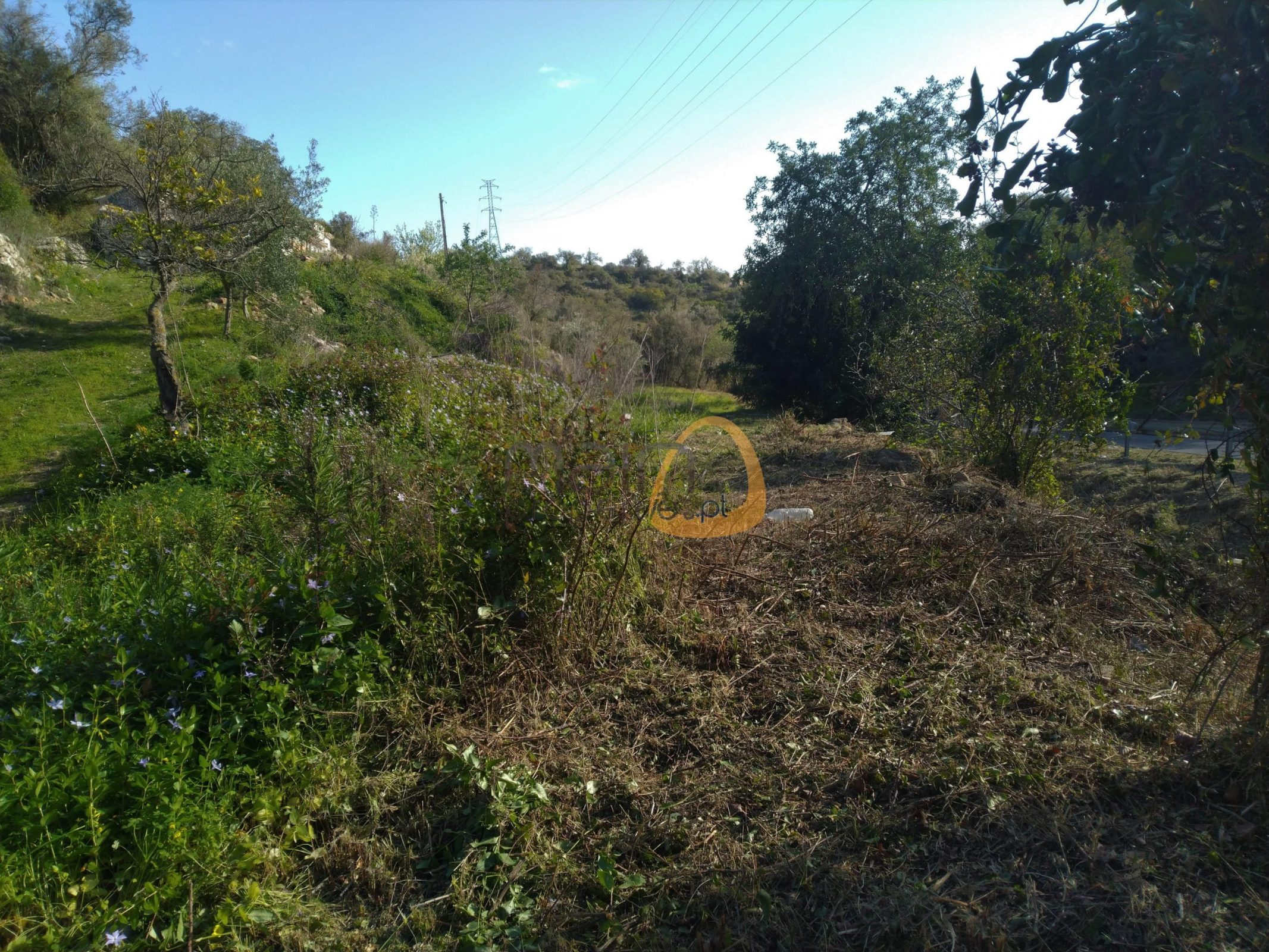 [:pt]10[:en]MainProperties :: Plot of land for construction in Estói, Faro :: MR044[:]