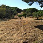 Terreno rústico nas Areias de Almancil :: MR036
