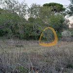 Terreno rústico plano em zona calma perto de Boliqueime :: MR065