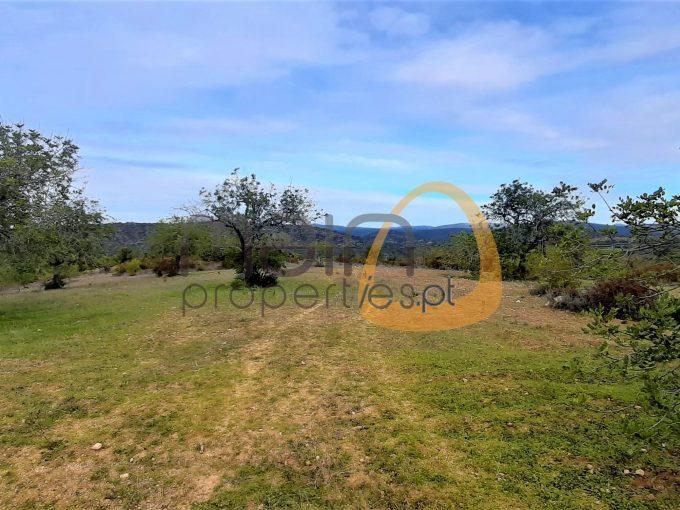 Terreno plano com vista serra entre Boliqueime e Paderne :: MR063