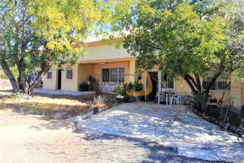 Moradia rústica com 11 quartos junto ao IKEA, em Santa Bárbara de Nexe :: MP153VP