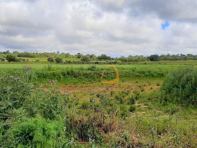 MainProperties :: Terreno rústico com vista serra próximo do centro de Tunes :: MR080