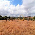 MainProperties :: Terreno com ruína em Paderne, Albufeira :: CV010