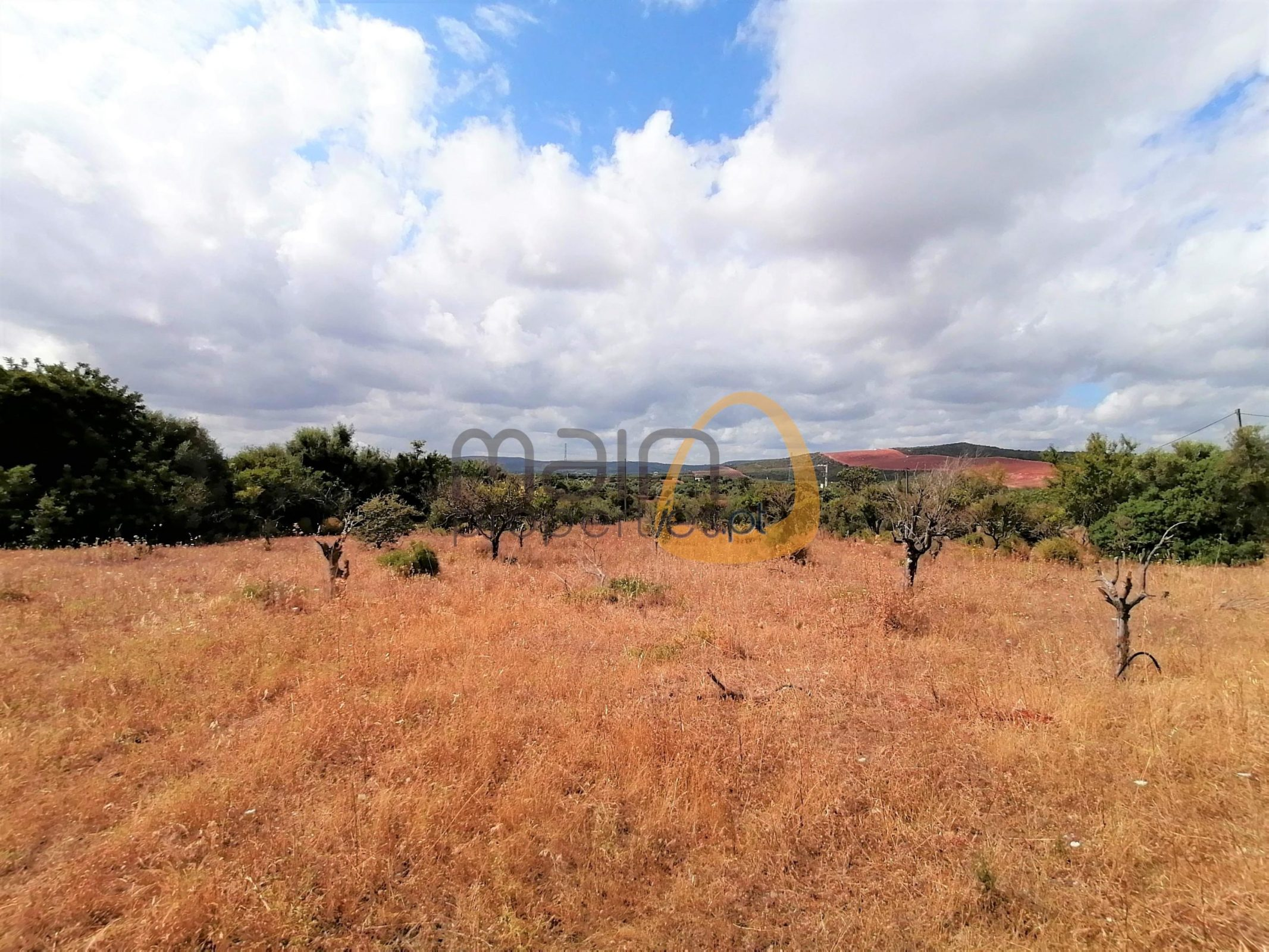 Land with ruin in Paderne, Albufeira