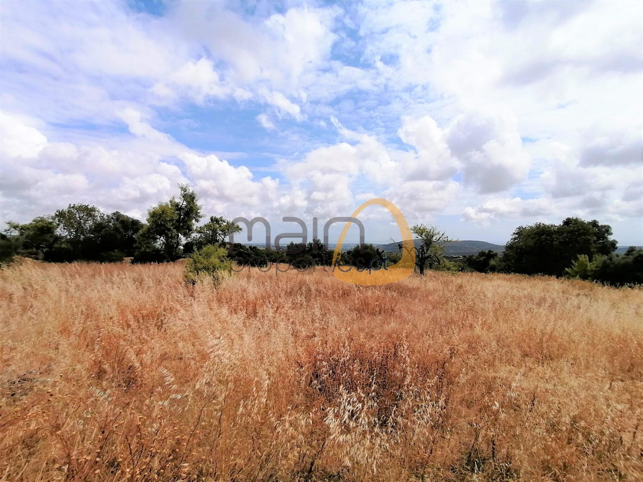 MainProperties :: Moradia com vista mar para renovar nos arredores de Loulé :: CV013