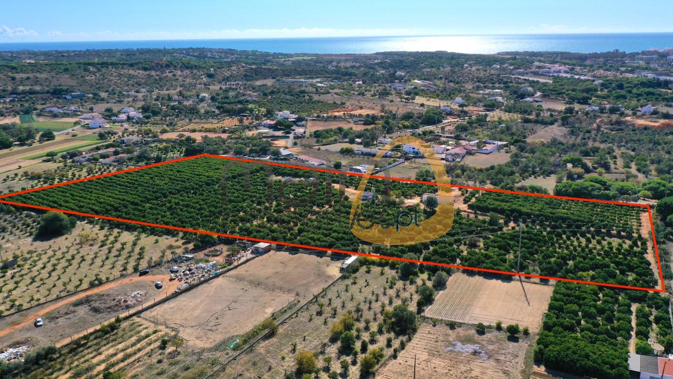 Plot for construction with orchard in Semino, Quarteira